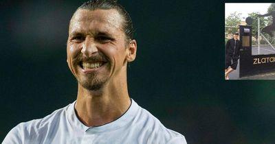 Das bekommt Zlatan Ibrahimovic von den Schweden geschenkt!
