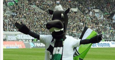 Die besten Maskottchen der Bundesliga!