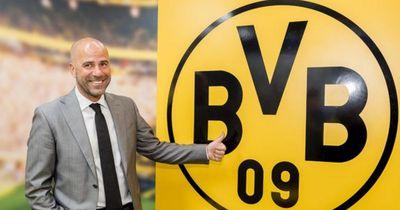 Dortmund verstärkt sich mit Albert Capellas